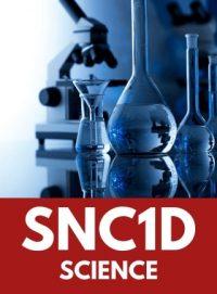 Grade 9 Science image
